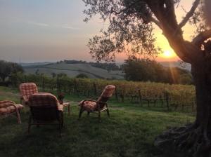 A TAV sunset 7
